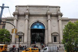 museum d'histoire naturelle de new york