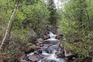 cascade d'eau au parc jacques cartier