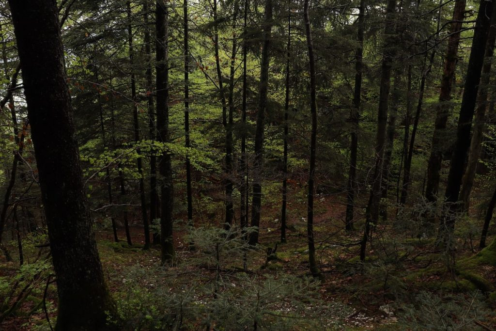 randonnée mont veyrier annecy